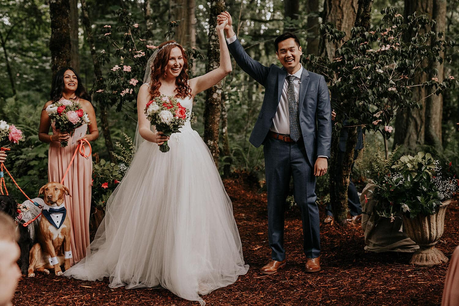 Bride and groom getting married at their own backyard in Seattle WA with their closest friends and dogs